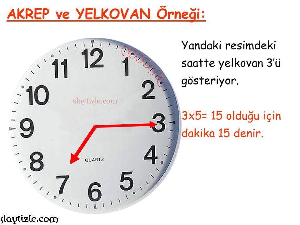 AKREP ve YELKOVAN Örneği: