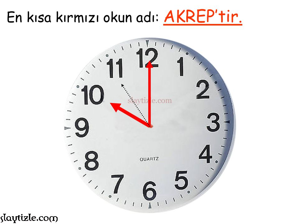 En kısa kırmızı okun adı: AKREP'tir.