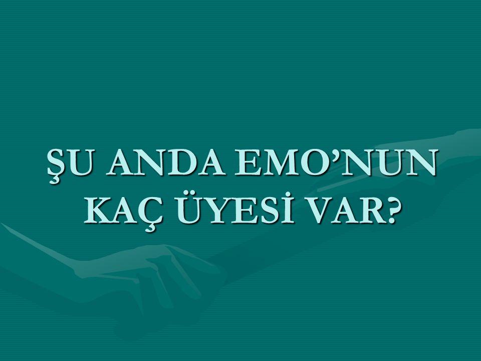 ŞU ANDA EMO'NUN KAÇ ÜYESİ VAR