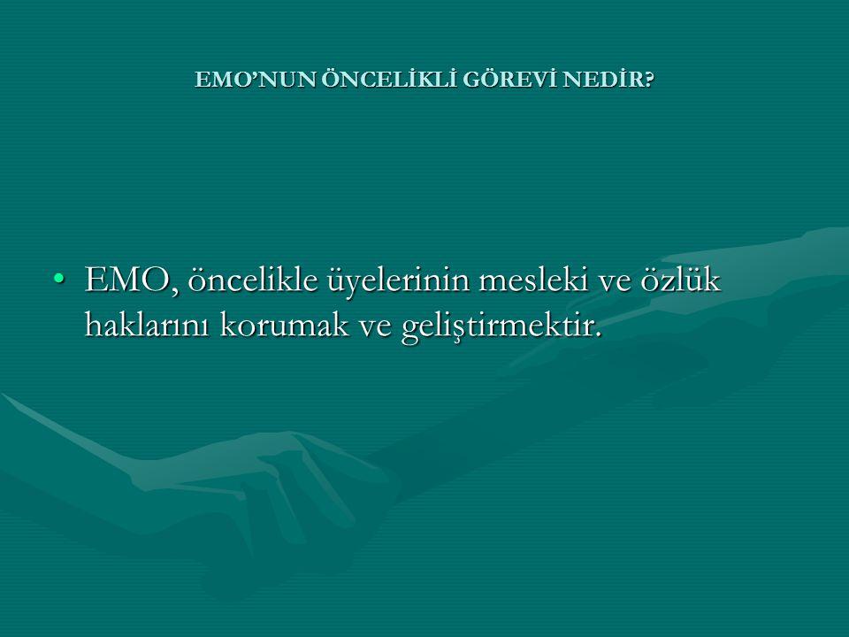 EMO'NUN ÖNCELİKLİ GÖREVİ NEDİR