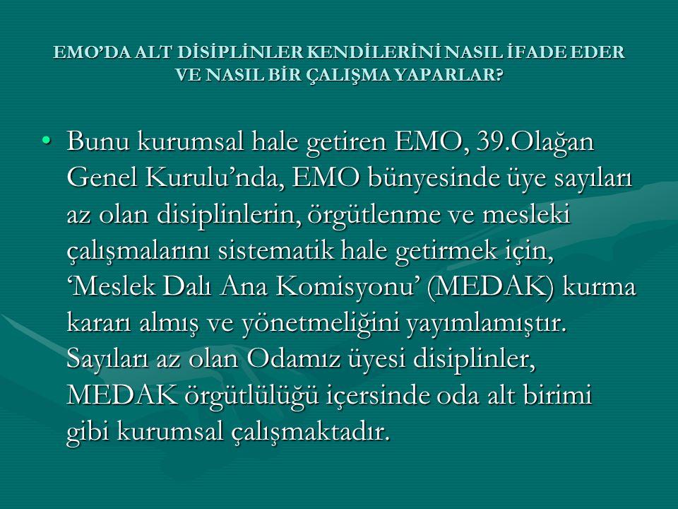 EMO'DA ALT DİSİPLİNLER KENDİLERİNİ NASIL İFADE EDER VE NASIL BİR ÇALIŞMA YAPARLAR