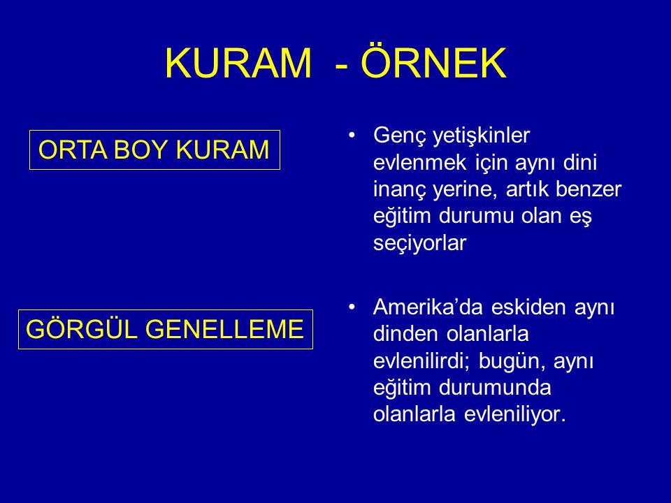 KURAM - ÖRNEK ORTA BOY KURAM GÖRGÜL GENELLEME