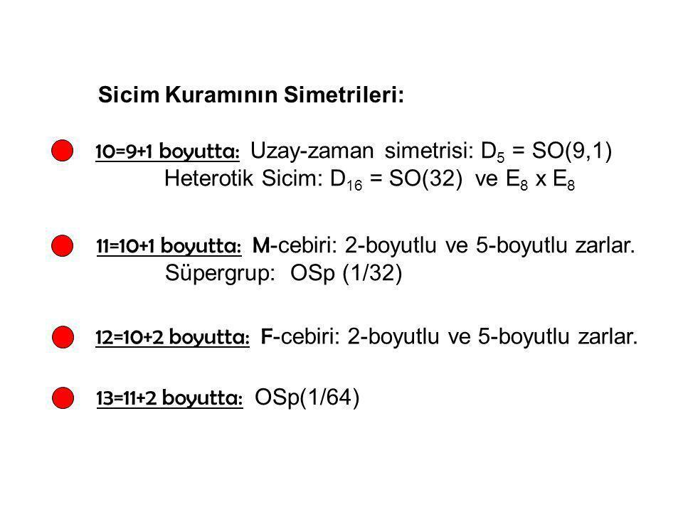 Sicim Kuramının Simetrileri: