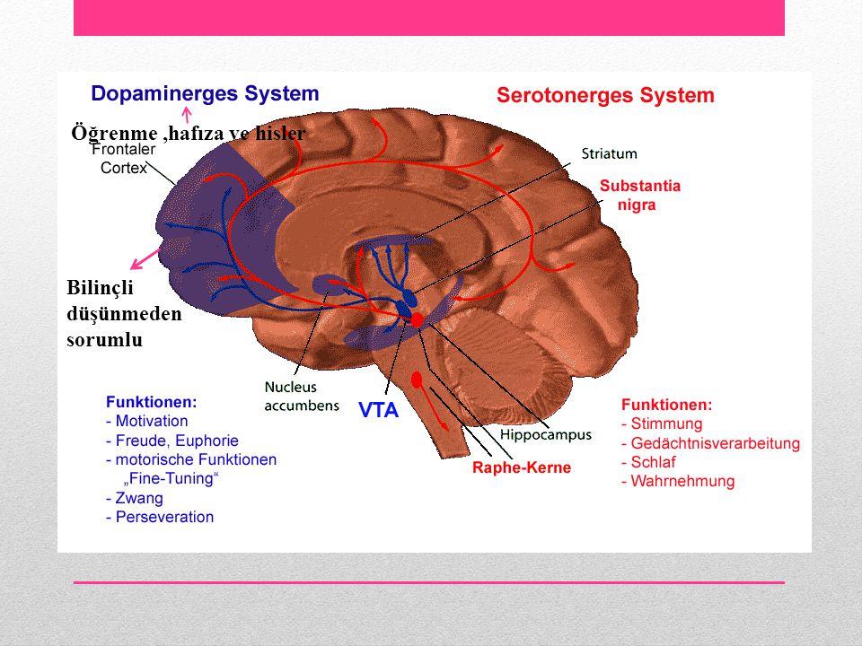 Öğrenme ,hafıza ve hisler