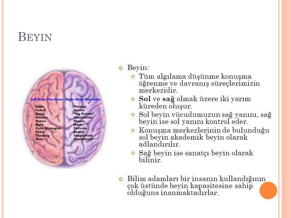 Beyin Beyin: Tüm algılama düşünme konuşma öğrenme ve davranış süreçlerimizin merkezidir. Sol ve sağ olmak üzere iki yarım küreden oluşur.