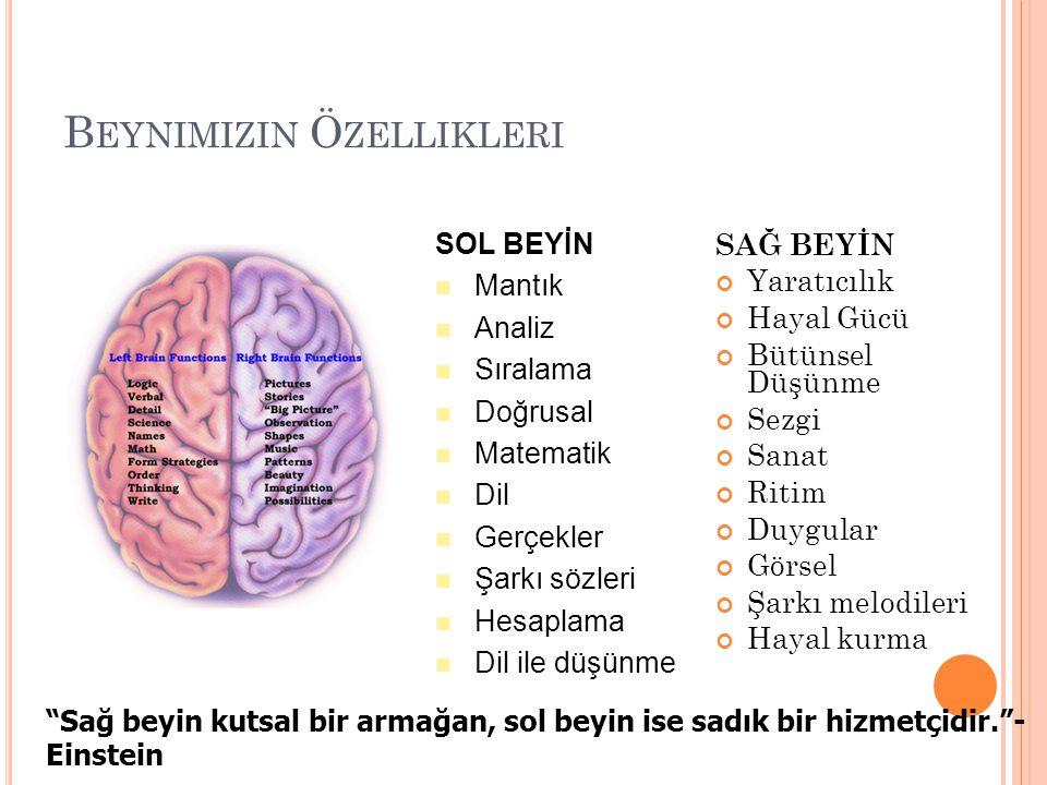 Beynimizin Özellikleri