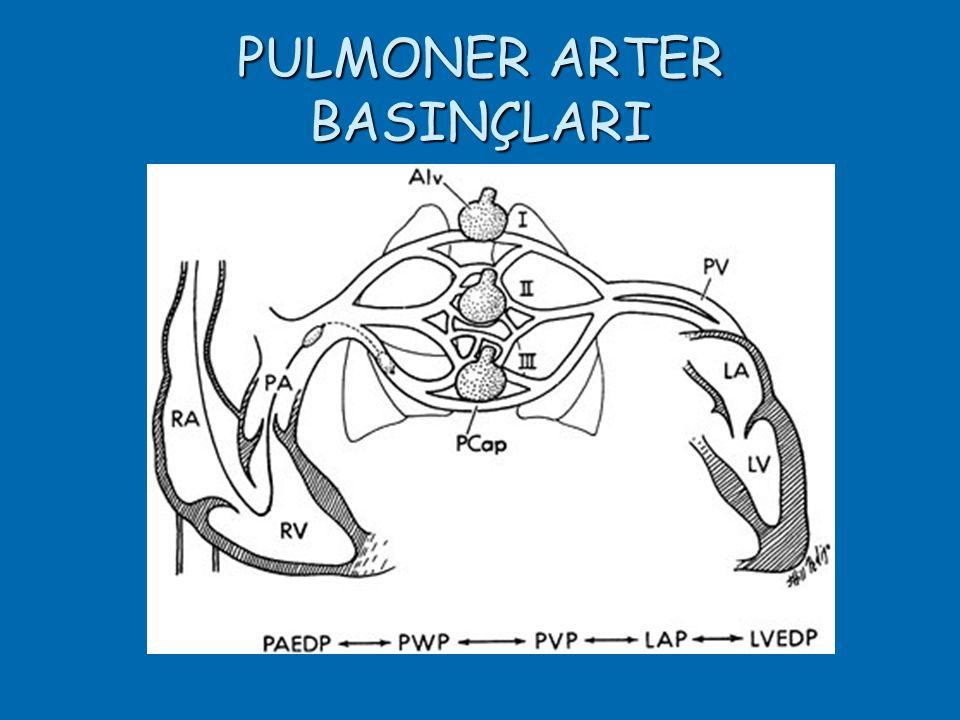 PULMONER ARTER BASINÇLARI