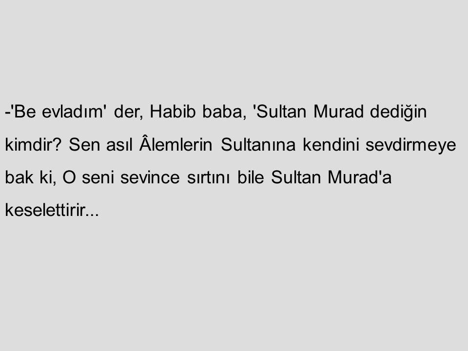 - Be evladım der, Habib baba, Sultan Murad dediğin kimdir