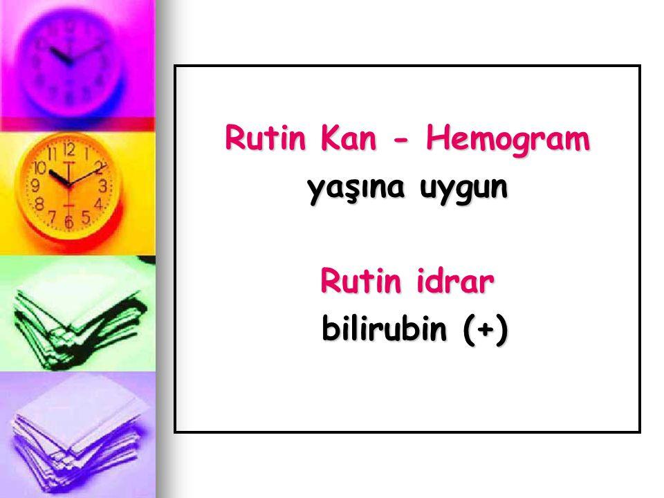 Rutin Kan - Hemogram yaşına uygun Rutin idrar bilirubin (+)