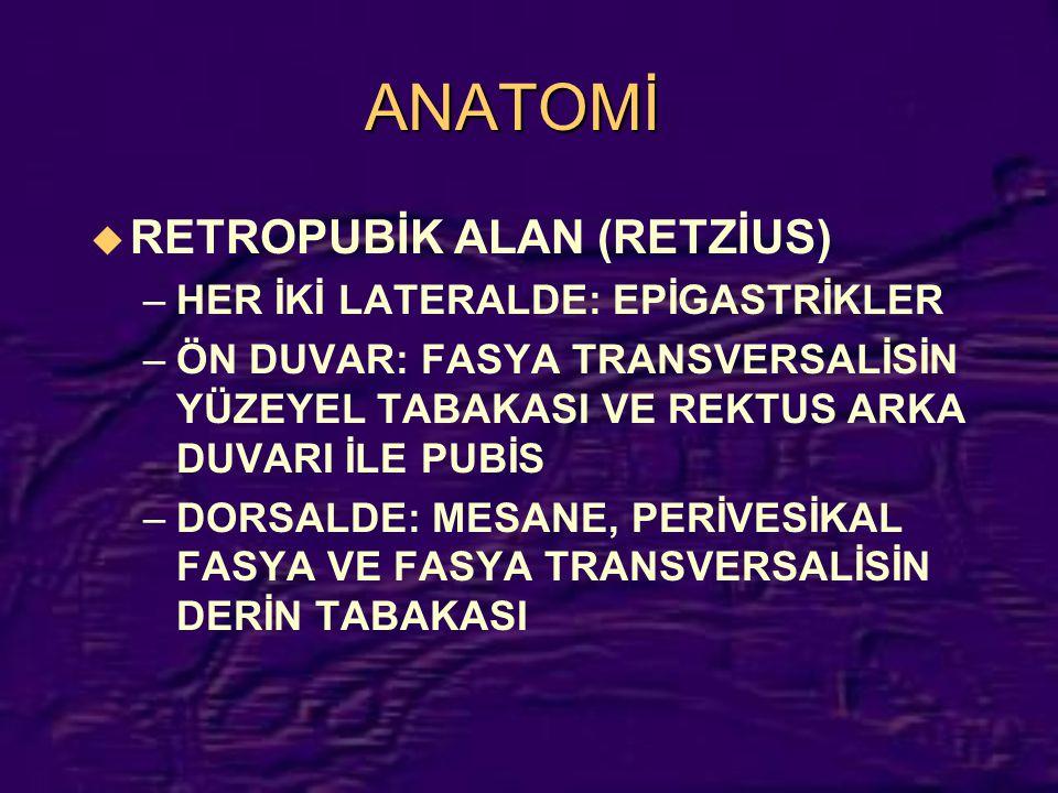 ANATOMİ RETROPUBİK ALAN (RETZİUS) HER İKİ LATERALDE: EPİGASTRİKLER