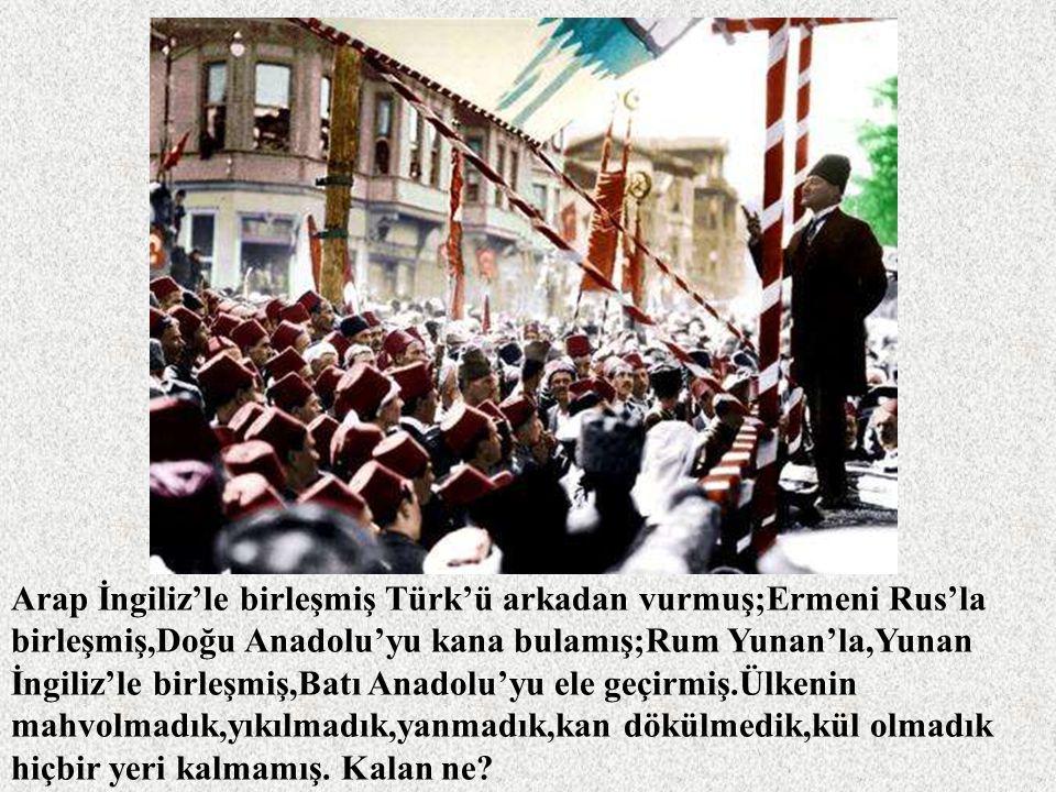 Arap İngiliz'le birleşmiş Türk'ü arkadan vurmuş;Ermeni Rus'la birleşmiş,Doğu Anadolu'yu kana bulamış;Rum Yunan'la,Yunan İngiliz'le birleşmiş,Batı Anadolu'yu ele geçirmiş.Ülkenin mahvolmadık,yıkılmadık,yanmadık,kan dökülmedik,kül olmadık hiçbir yeri kalmamış.