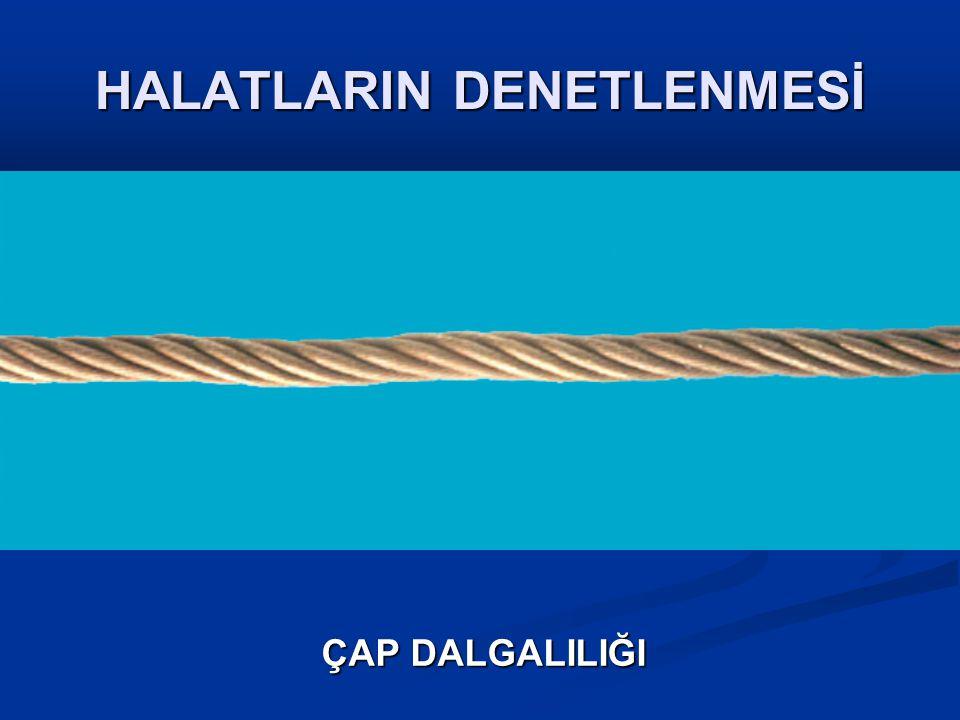 HALATLARIN DENETLENMESİ