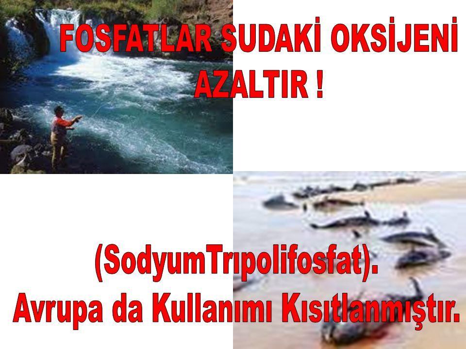 FOSFATLAR SUDAKİ OKSİJENİ AZALTIR !