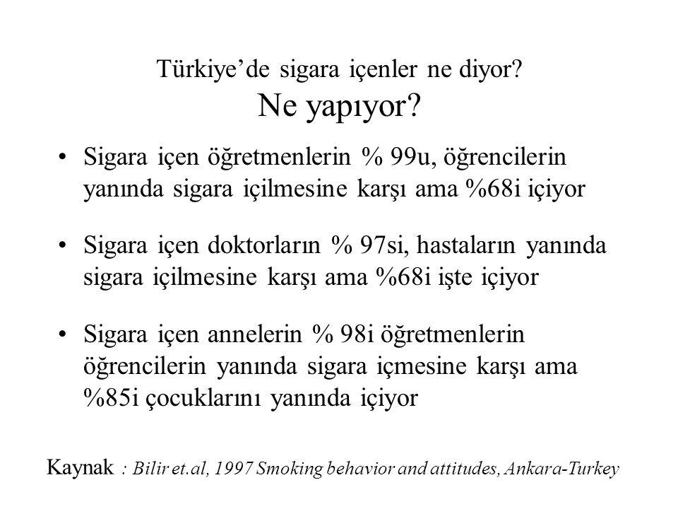 Türkiye'de sigara içenler ne diyor Ne yapıyor