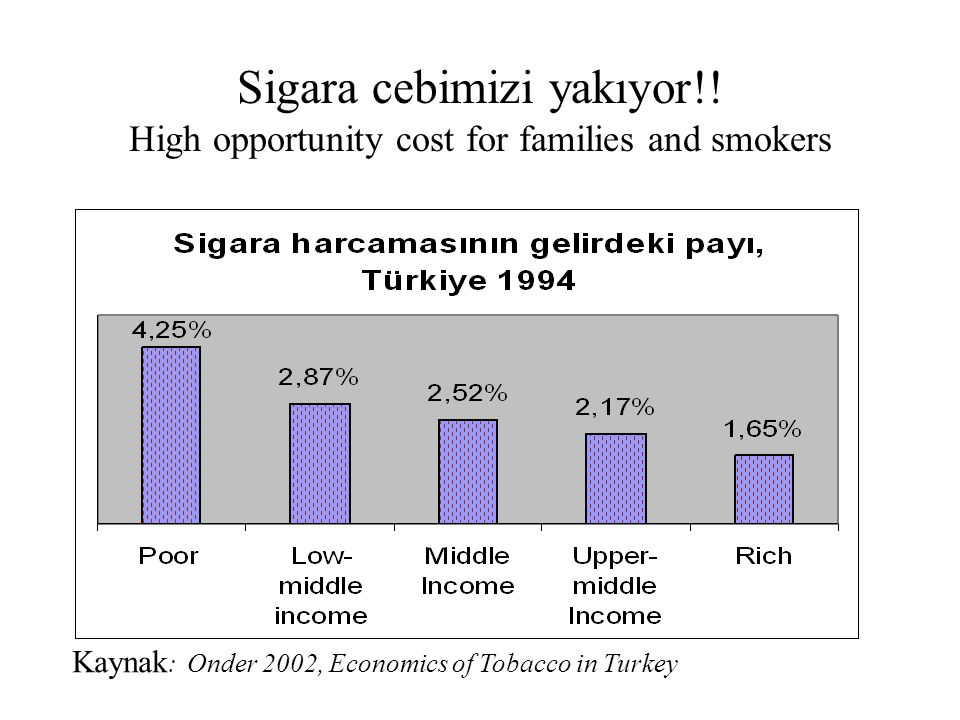 Sigara cebimizi yakıyor!! High opportunity cost for families and smokers