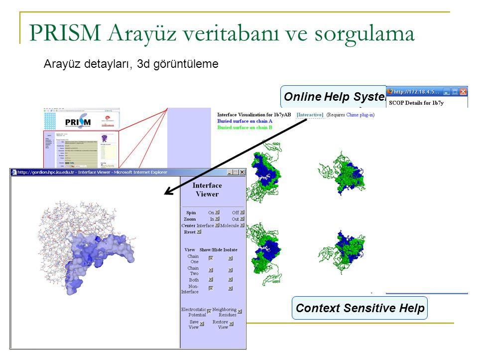 PRISM Arayüz veritabanı ve sorgulama