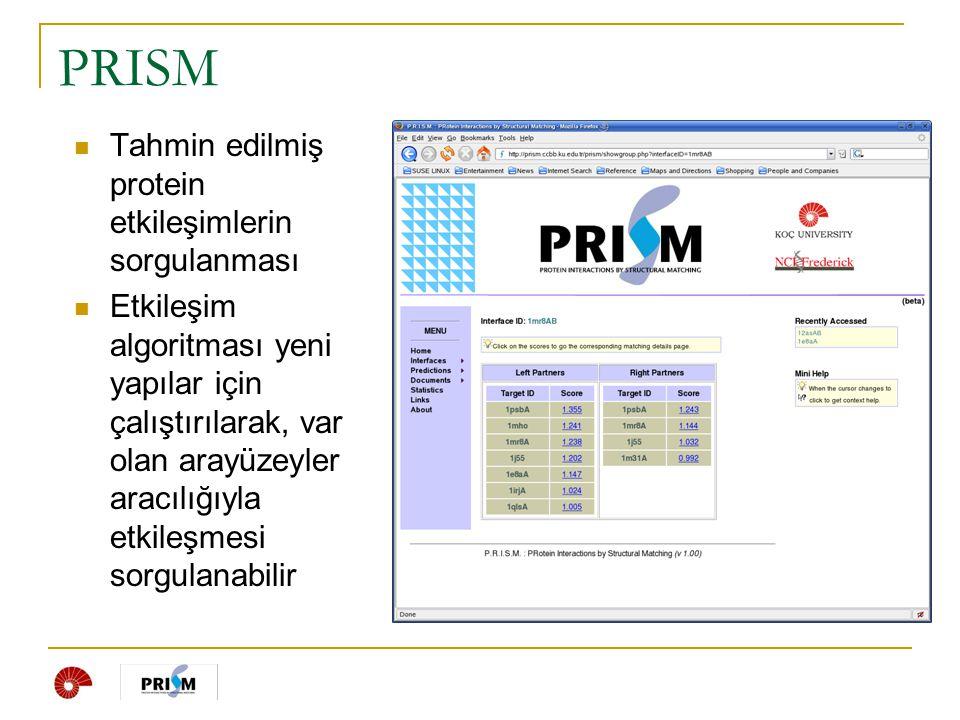 PRISM Tahmin edilmiş protein etkileşimlerin sorgulanması