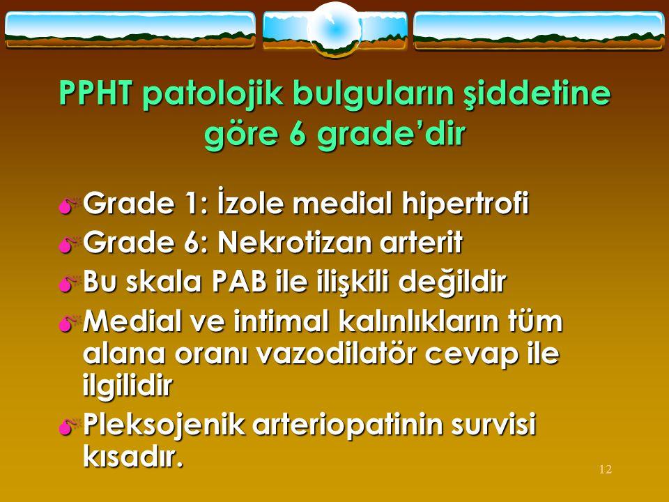 PPHT patolojik bulguların şiddetine göre 6 grade'dir