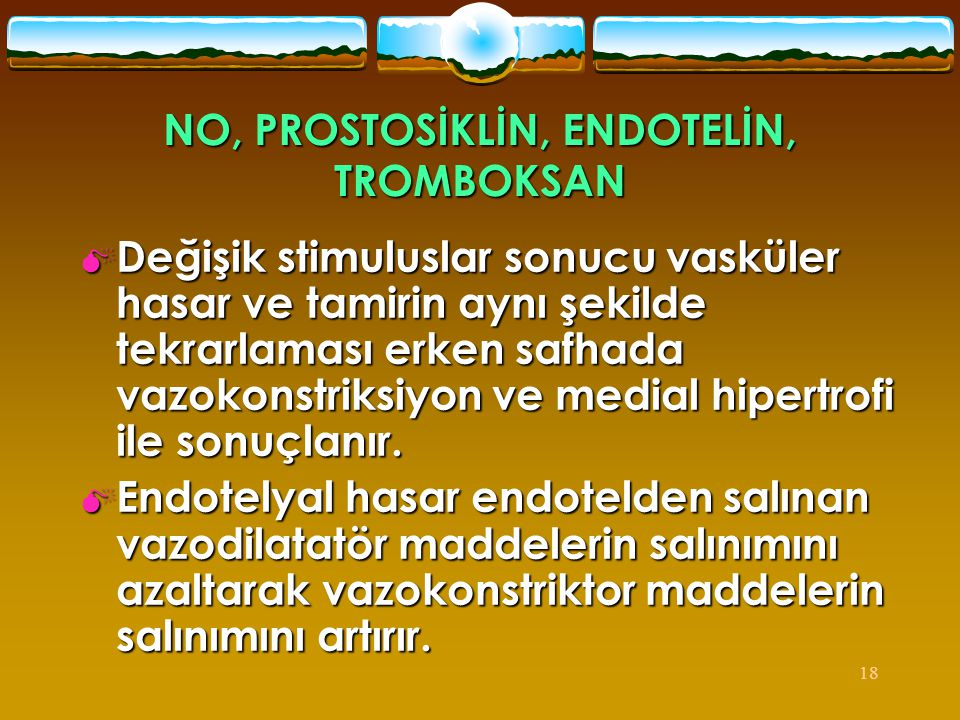 NO, PROSTOSİKLİN, ENDOTELİN, TROMBOKSAN