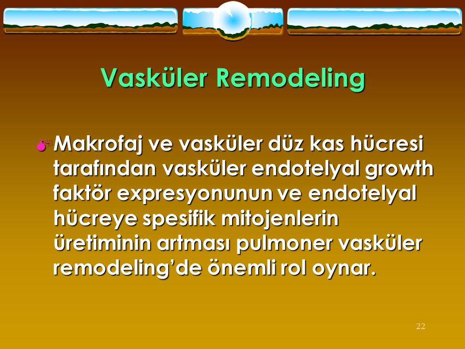 Vasküler Remodeling
