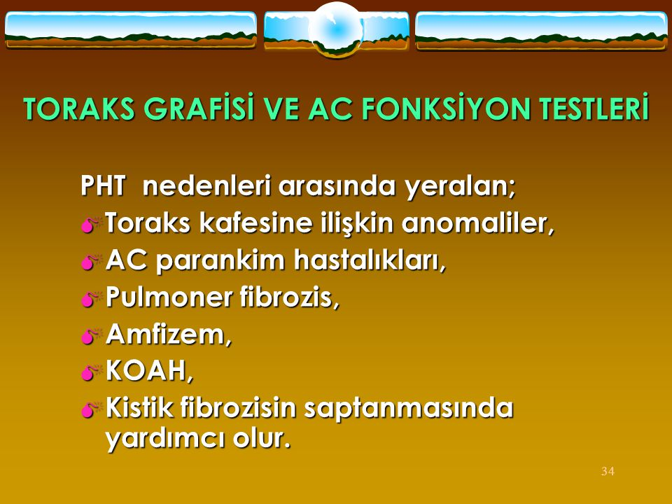 TORAKS GRAFİSİ VE AC FONKSİYON TESTLERİ
