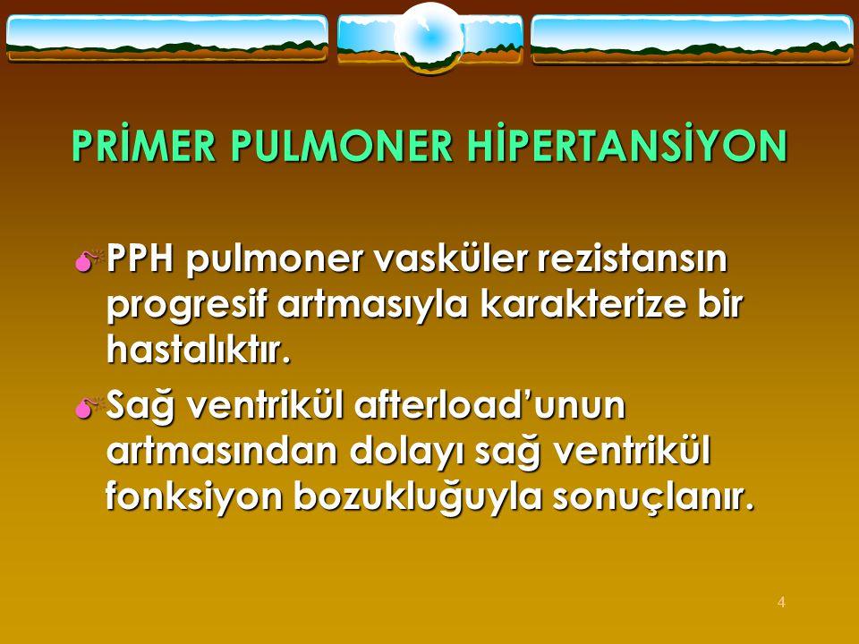 PRİMER PULMONER HİPERTANSİYON