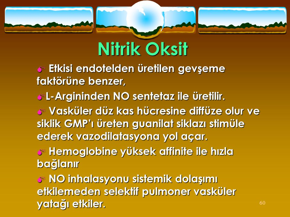 Nitrik Oksit Etkisi endotelden üretilen gevşeme faktörüne benzer,