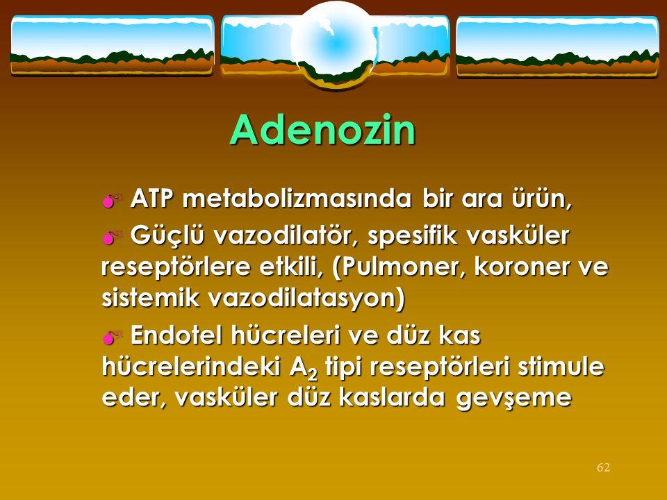 Adenozin ATP metabolizmasında bir ara ürün,
