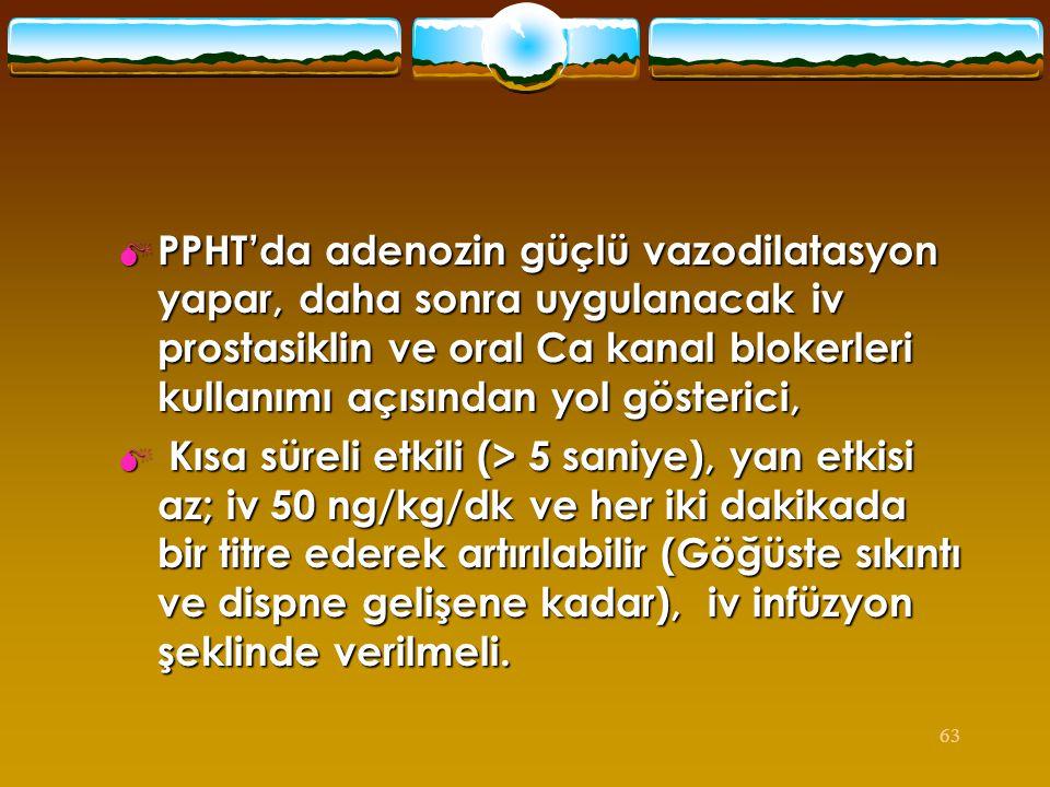 PPHT'da adenozin güçlü vazodilatasyon yapar, daha sonra uygulanacak iv prostasiklin ve oral Ca kanal blokerleri kullanımı açısından yol gösterici,
