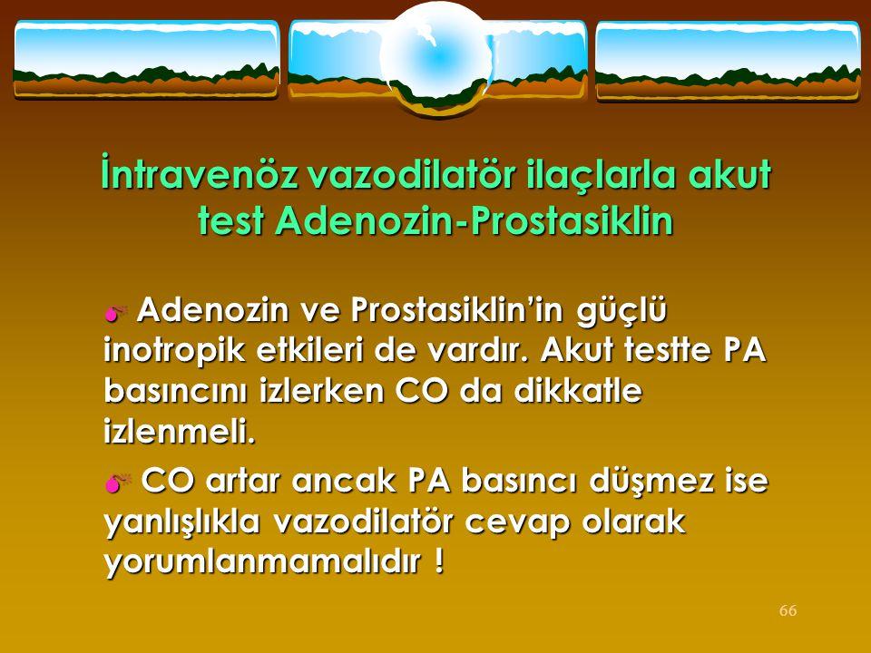 İntravenöz vazodilatör ilaçlarla akut test Adenozin-Prostasiklin