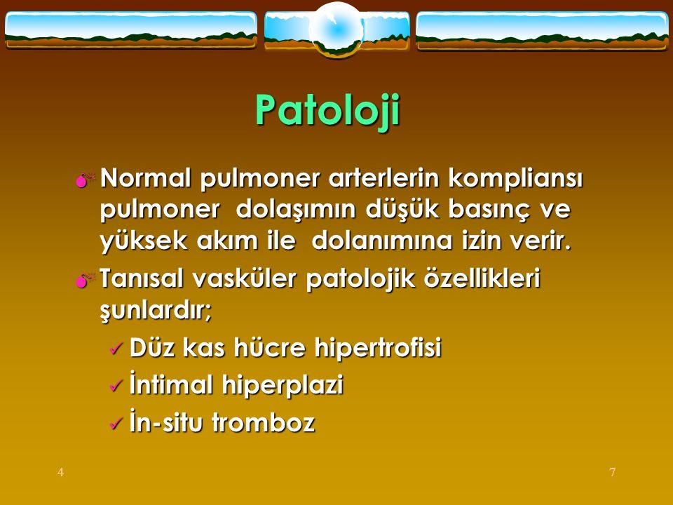 Patoloji Normal pulmoner arterlerin kompliansı pulmoner dolaşımın düşük basınç ve yüksek akım ile dolanımına izin verir.