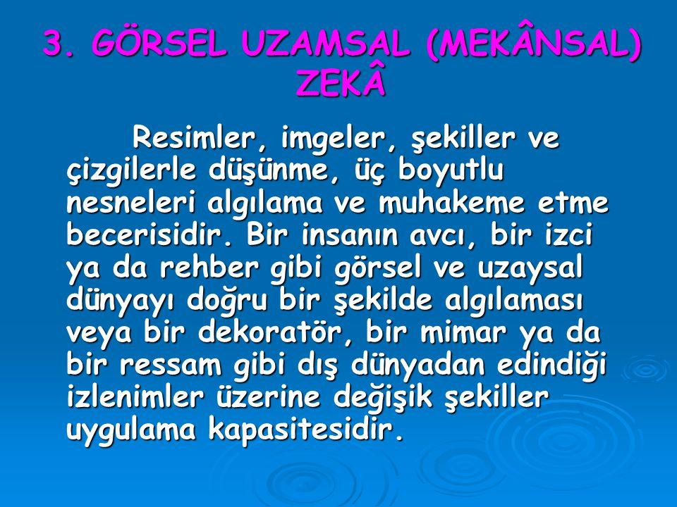 3. GÖRSEL UZAMSAL (MEKÂNSAL) ZEKÂ