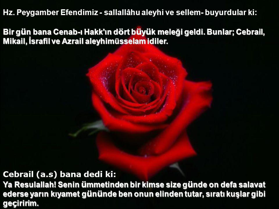 Hz. Peygamber Efendimiz - sallallâhu aleyhi ve sellem- buyurdular ki:
