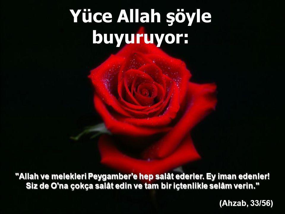 Yüce Allah şöyle buyuruyor: