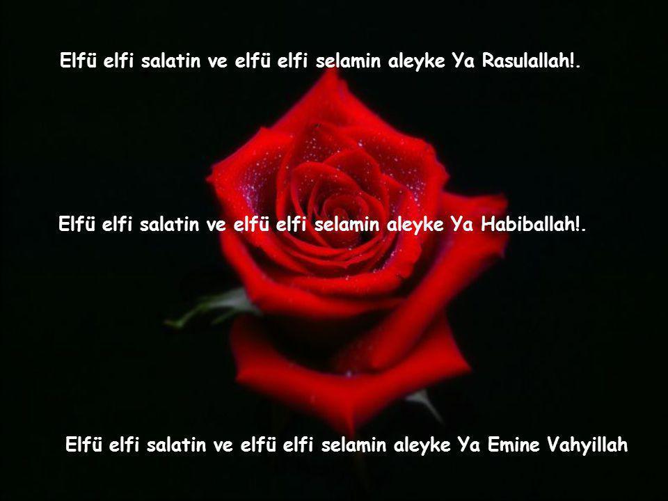 Elfü elfi salatin ve elfü elfi selamin aleyke Ya Rasulallah!.