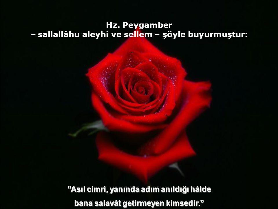 Hz. Peygamber – sallallâhu aleyhi ve sellem – şöyle buyurmuştur: