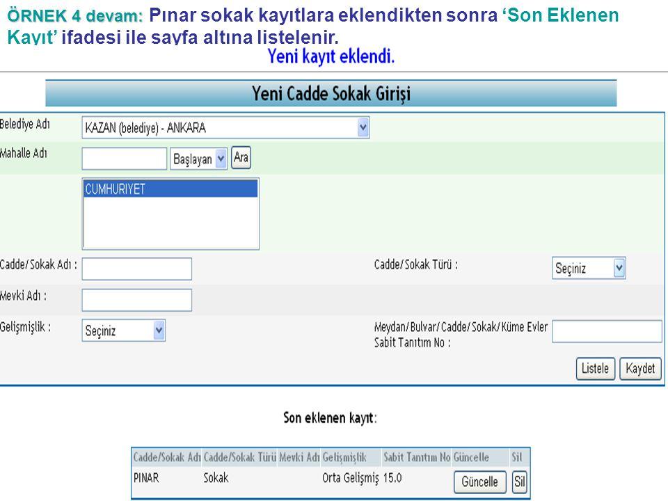 ÖRNEK 4 devam: Pınar sokak kayıtlara eklendikten sonra 'Son Eklenen Kayıt' ifadesi ile sayfa altına listelenir.