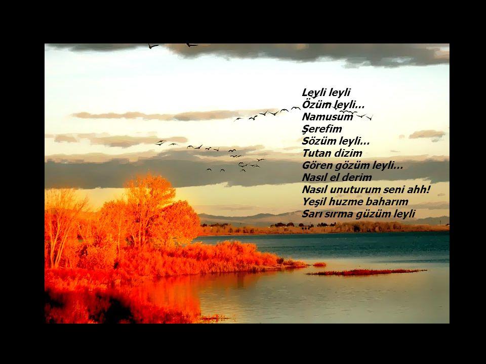 Leyli leyli Özüm leyli… Namusum. Şerefim. Sözüm leyli… Tutan dizim. Gören gözüm leyli… Nasıl el derim.