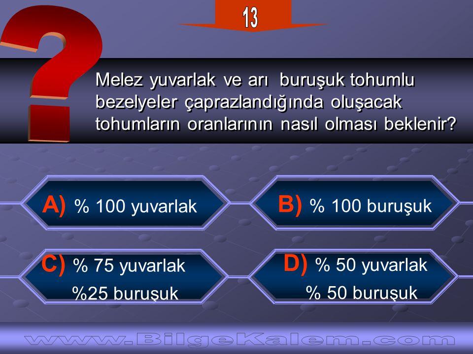 13 A) % 100 yuvarlak B) % 100 buruşuk