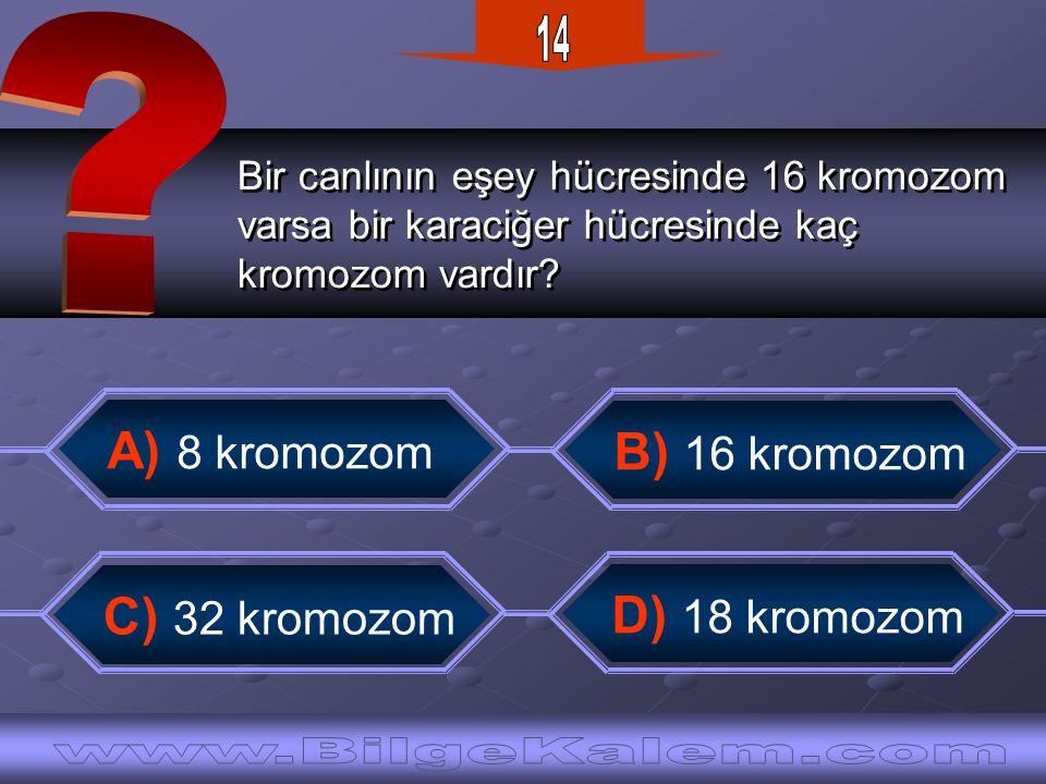 14 A) 8 kromozom B) 16 kromozom