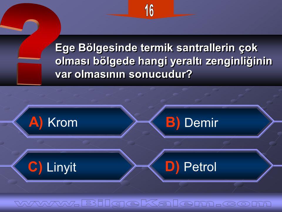 16 A) Krom B) Demir C) Linyit D) Petrol