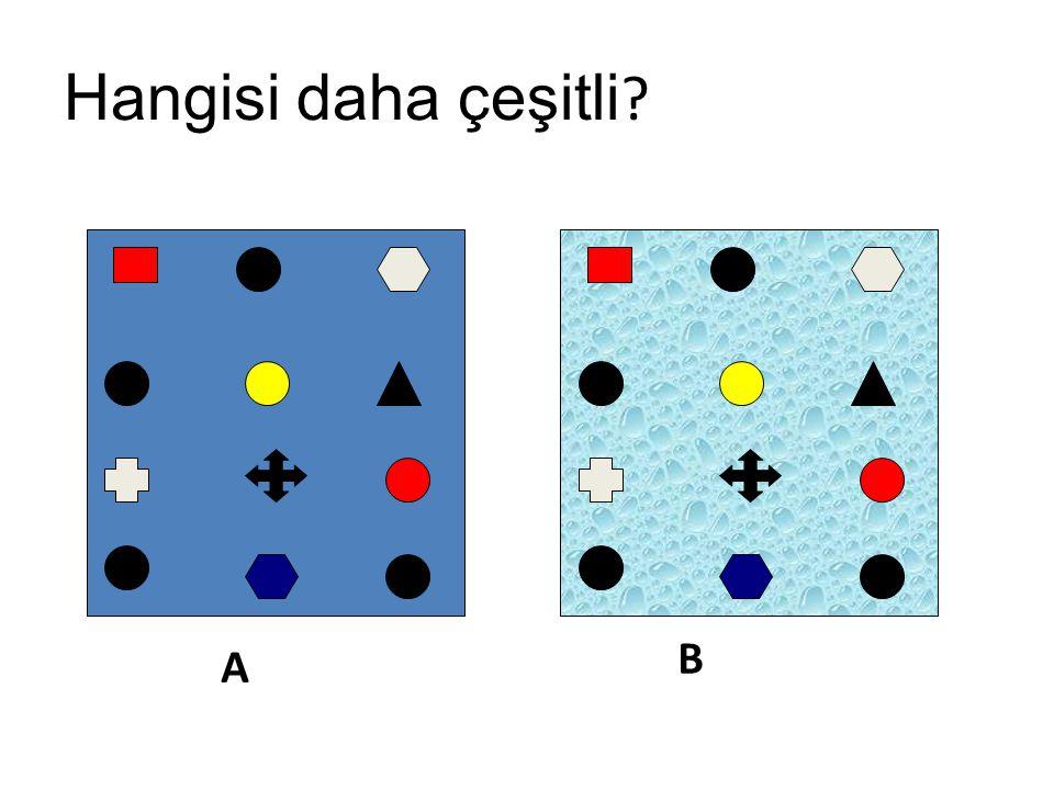 Hangisi daha çeşitli B A