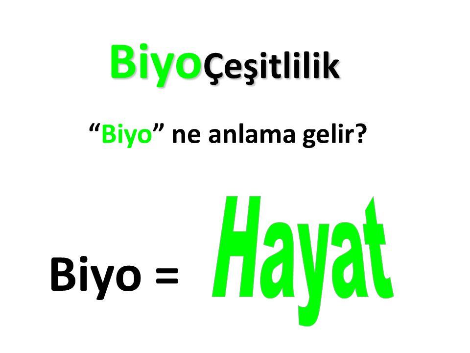 BiyoÇeşitlilik Biyo ne anlama gelir Biyo = Hayat
