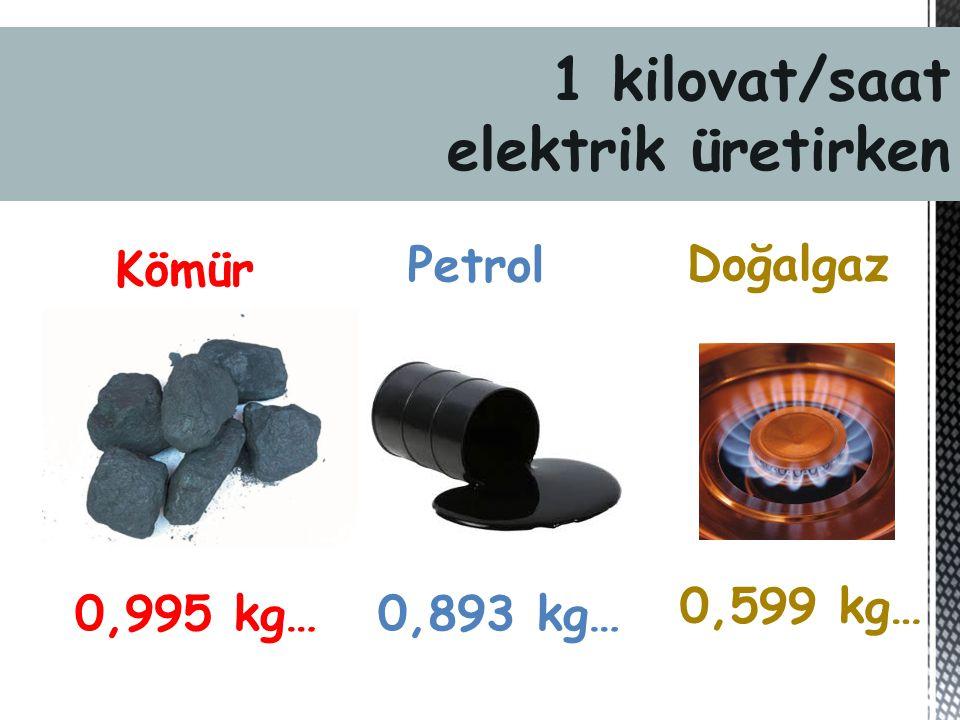 1 kilowatt/saat elektrik üretirken