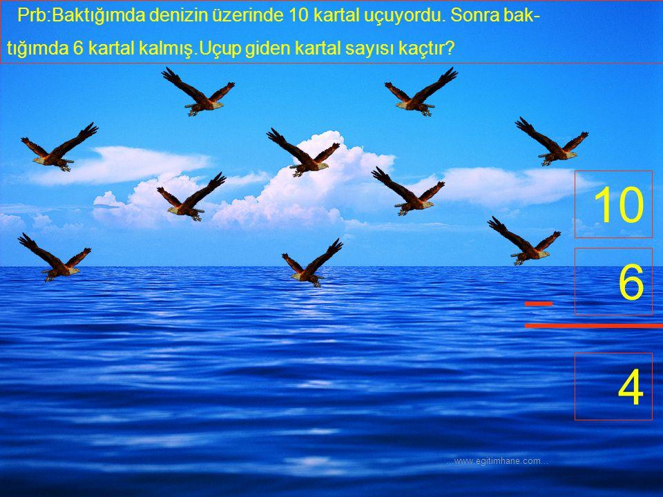 10 6 4 Prb:Baktığımda denizin üzerinde 10 kartal uçuyordu. Sonra bak-