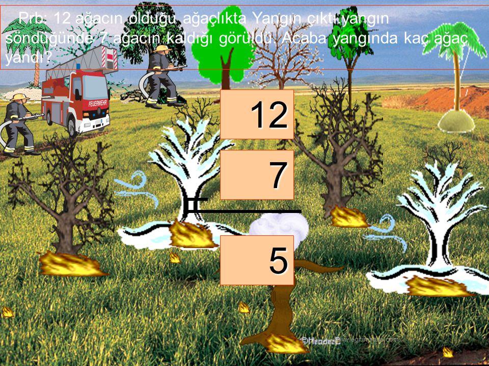 Prb: 12 ağacın olduğu ağaçlıkta Yangın çıktı