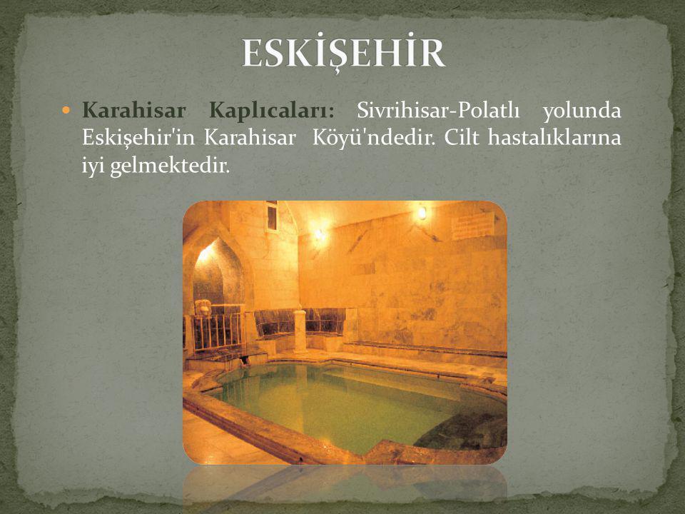 ESKİŞEHİR Karahisar Kaplıcaları: Sivrihisar-Polatlı yolunda Eskişehir in Karahisar Köyü ndedir.