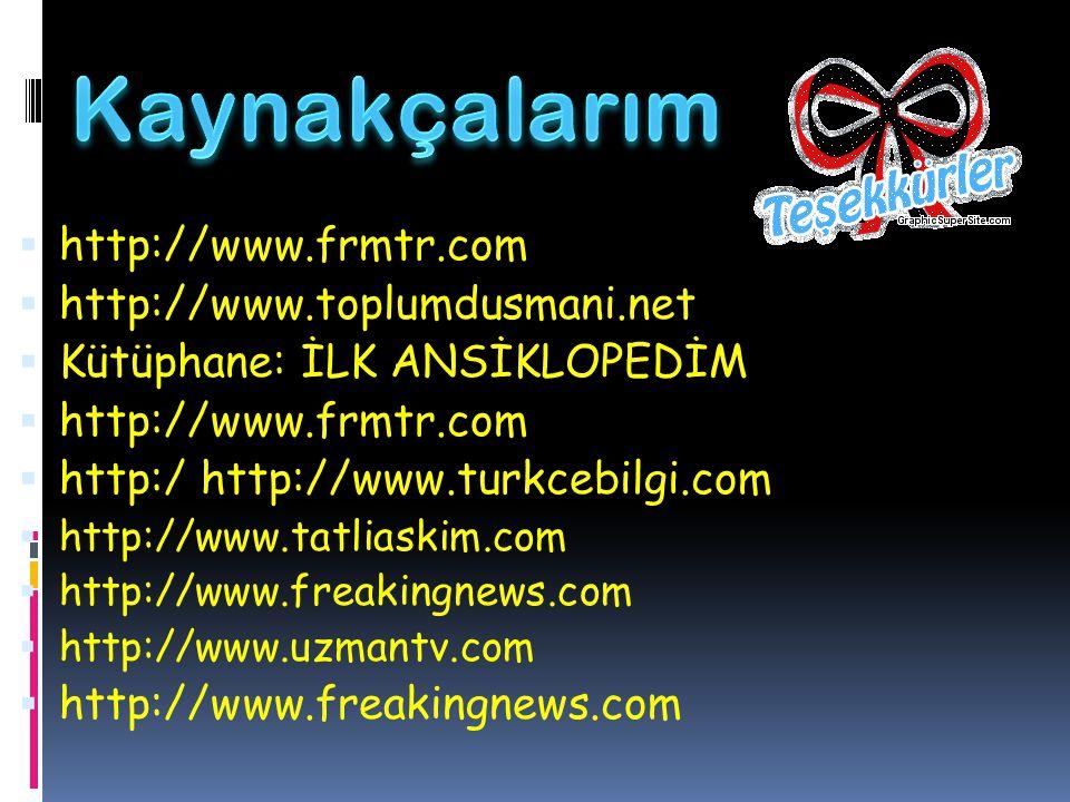 Kaynakçalarım http://www.frmtr.com http://www.toplumdusmani.net