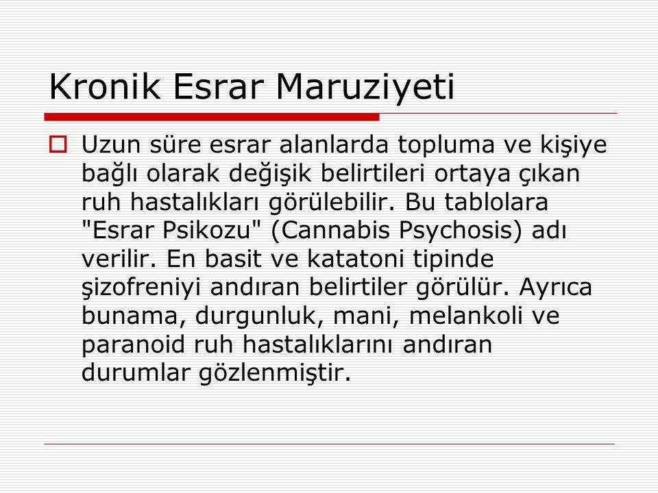 Kronik Esrar Maruziyeti