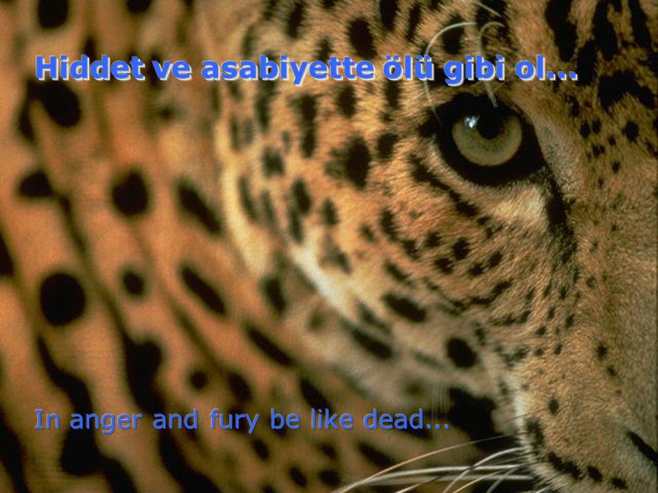 Hiddet ve asabiyette ölü gibi ol...
